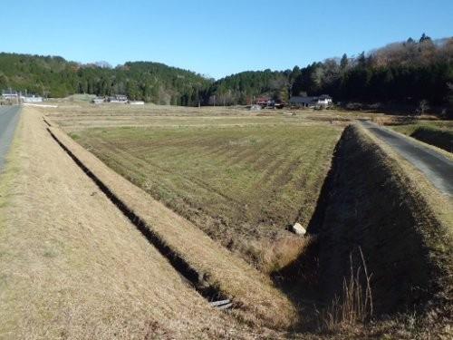 岩村町の水田、ここに新規就農者が一軒、入る予定です