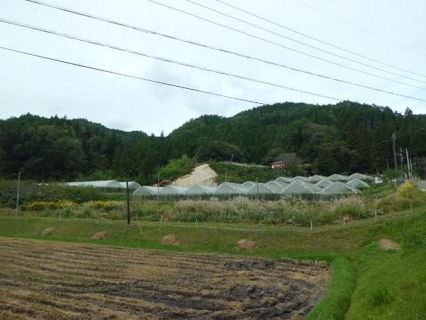 25年10月9日  台風通過の朝・・・
