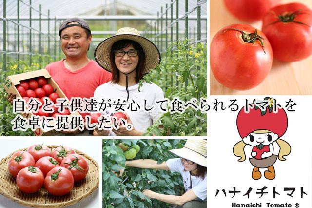 花村トマト農園メインバナー