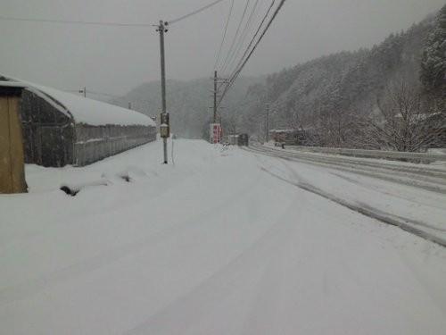 すげー雪でした