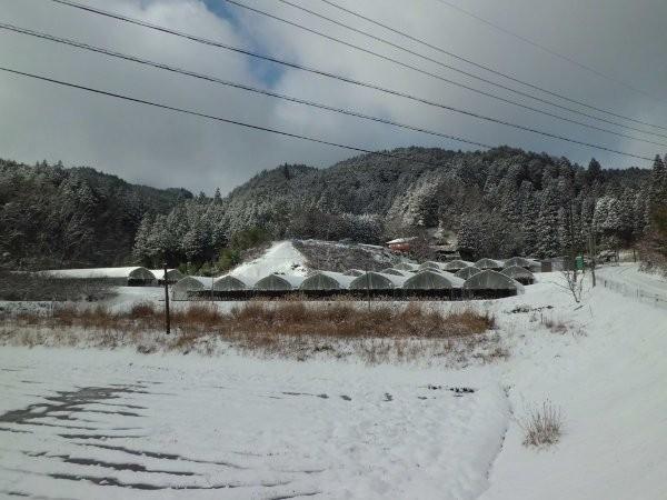 12月18日の雪・・・・