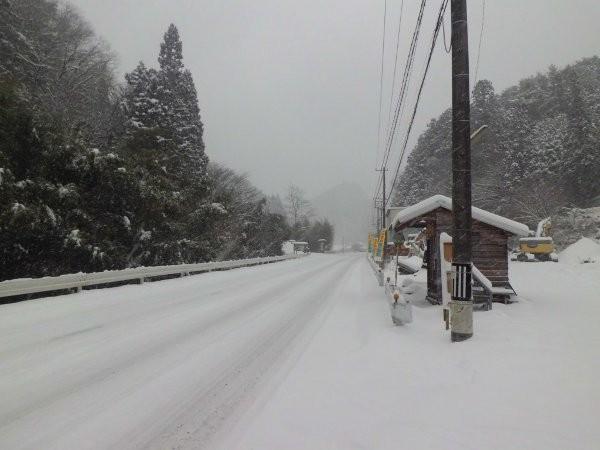 雪国モードですが、軽い雪です