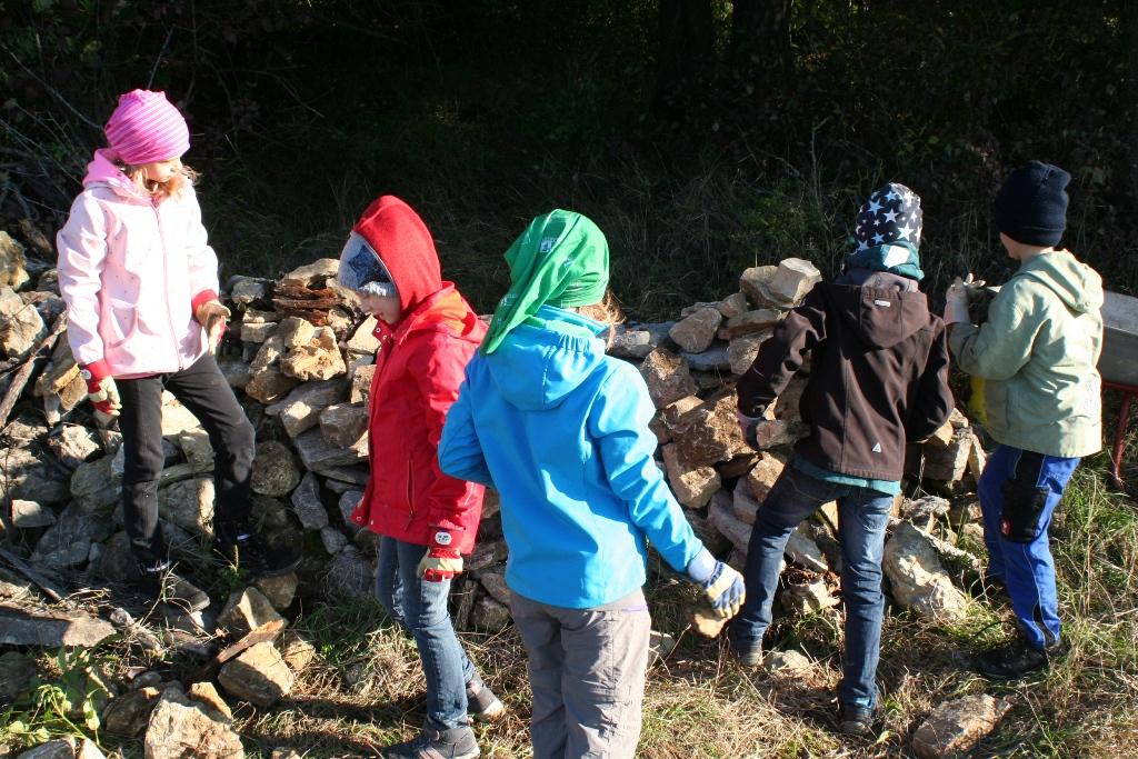 Der Steinriegel wird seit 2015 kontinuierlich von den Kindern vergrößert, um den Lebensraum insbesondere der Zauneidechse zu vergrößern.