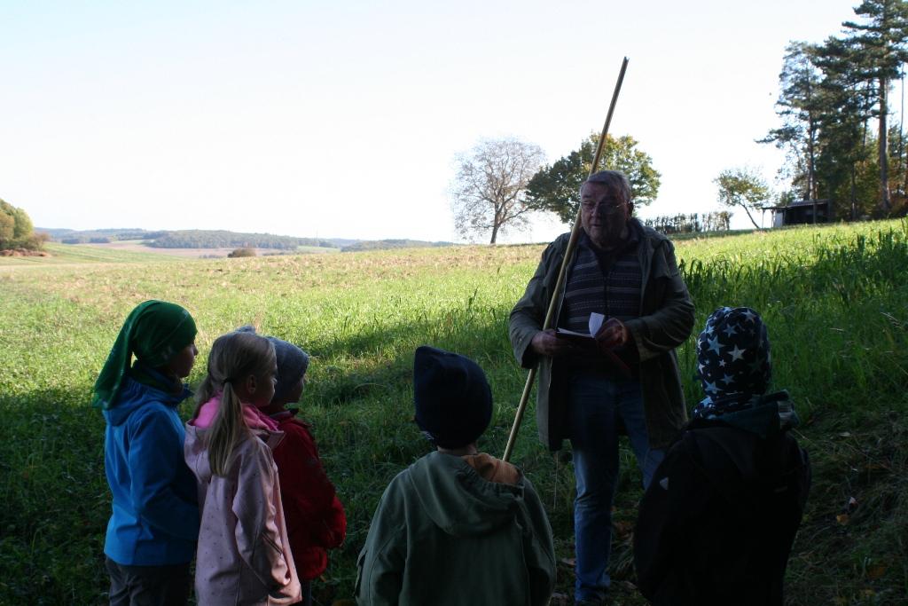 Gruppe III kontrollierte und säuberte die Nistkästen auf dem Gelände des Waldseilgartens.