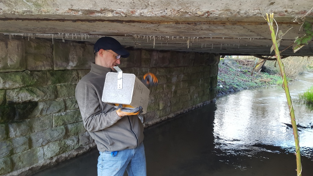 Peter Schlör bei der Montage des Nistkastens in Unterschüpf.