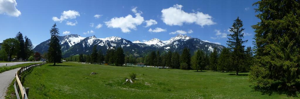 Grüne Wiesen und die Alpen