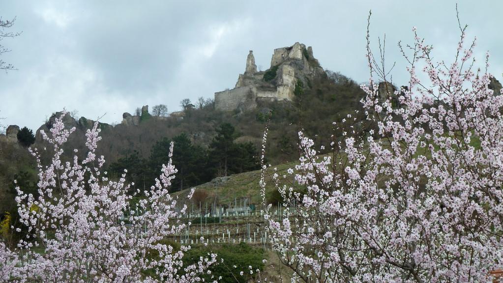 Dürnstein wo König Löwenherz eingesperrt wurde