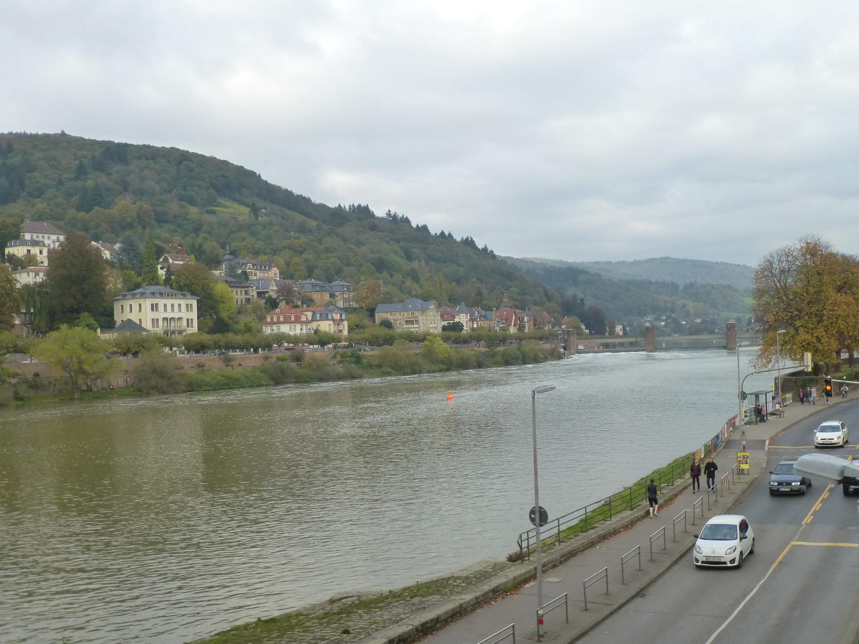 Neckar mit Heidelberg