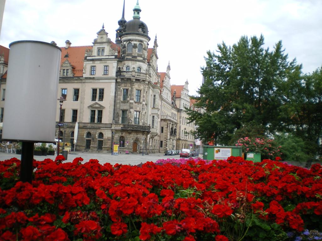 Dresden einer meiner Traumstädte