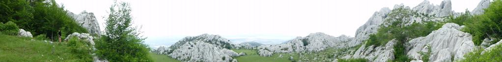 Blick auf die grüne Wiese