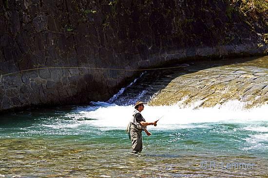 Fliegenfischen in der Gail bei Kötschach