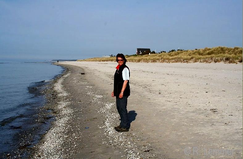 Iris am Rørvig Beach Nordstrand - Nykøbing