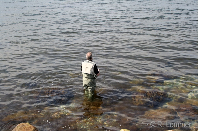 Fliegenfischen auf der Halbinsel Helnaes