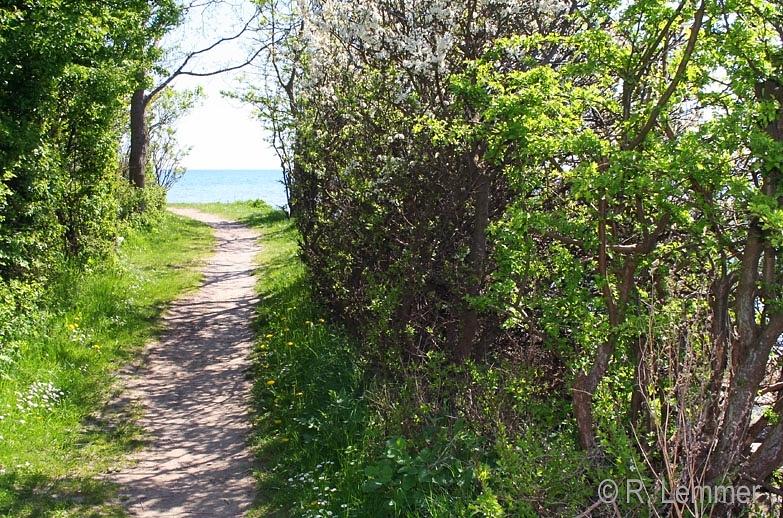 Strandweg bei Nysted