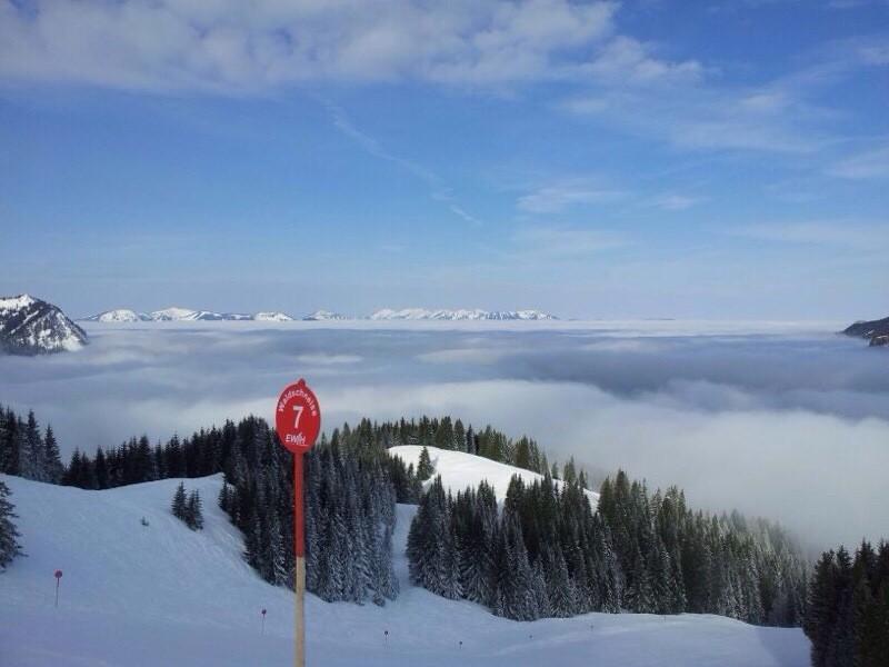 Abfahrt Waldschneise Iseler