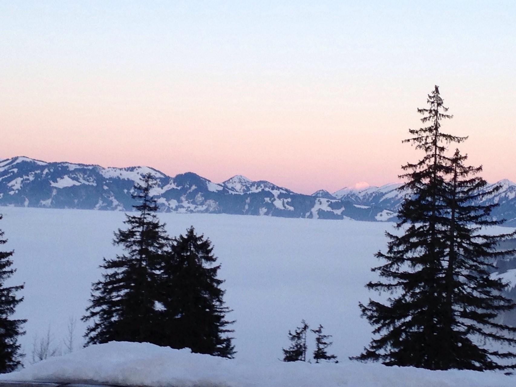 Nebliges Unterland vor dem Sonnenuntergang