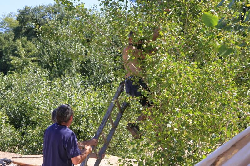 Accrochage dans les arbres rien n'arrête les gars de la Loire !