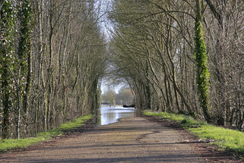 Loire à vélo ou en canoë !