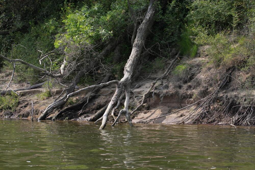 Érosion des Bords de la Loire
