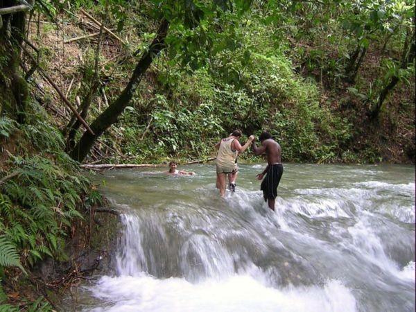 Mitten in der tropischen Natur: Wasserwanderung entlang der Mayfield Falls