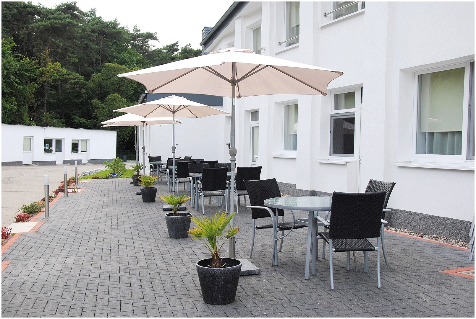 Terrasse / Eingang - Weiße Möwe