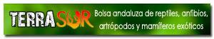 Bolsa andaluza de reptiles, anfibios, artrópodos y mamiferos exóticos.