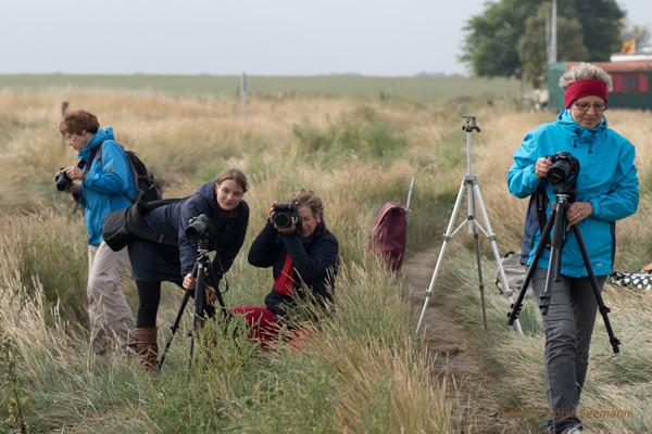 """Workshop """"Küstenfotografie - Dangast 09/2014"""" Bilder von Teilnehmer - Horst Seemann"""