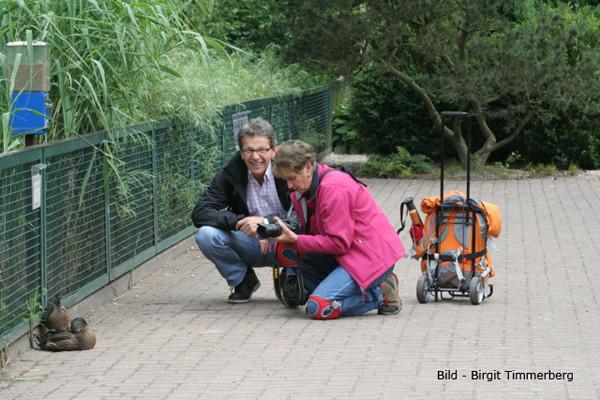 VHS Twistringen Workshop / Vogelpark Walsrode Juni 2014 - Linda gibt Unterricht