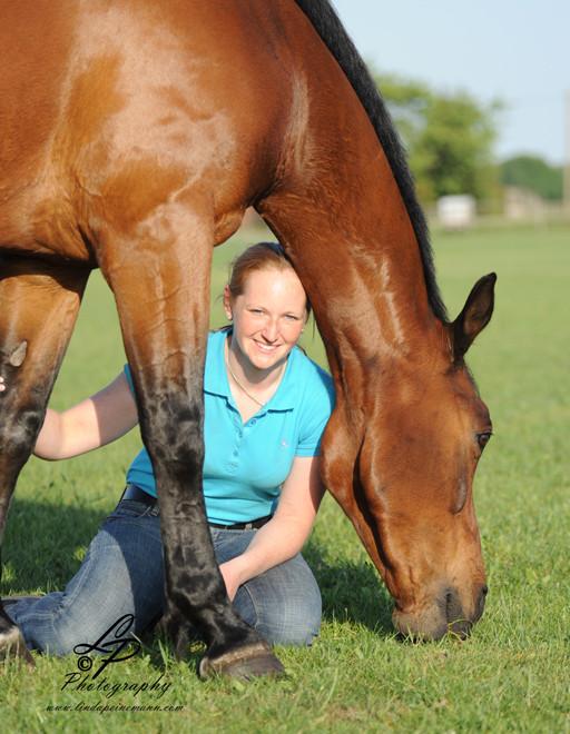 Ich vertraue mein Pferd