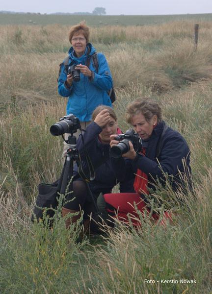 """Workshop """"Küstenfotografie - Dangast 09/2014"""" Bilder von Teilnehmerin - Kerstin Nowak"""