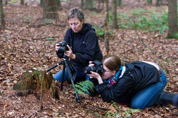 VHS Twistringen Landschaftsfotografie Nov. 2014