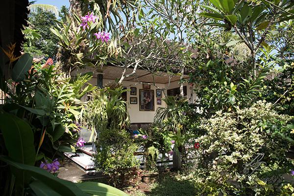 03 06 01 2018 Bali Indonesian Linda Peinemann Fotografie