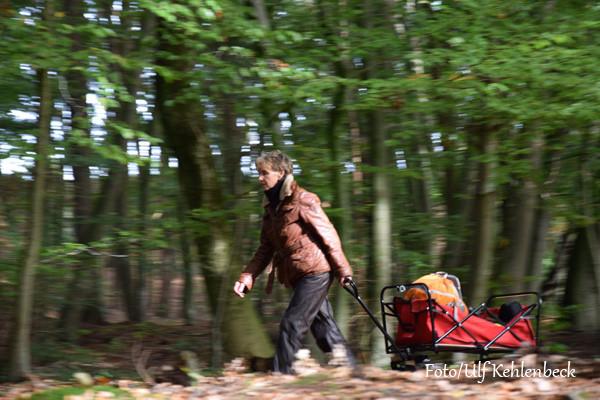VHS Landschaftsfotografie - Herbst 2014 Foto/Ulf Kehlenbeck