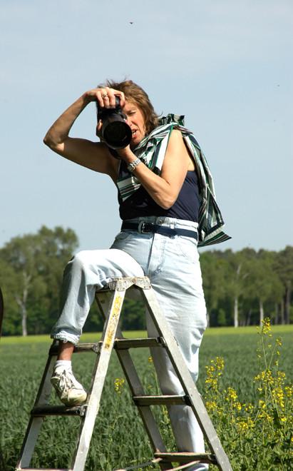 Bei der Arbeit - Pferdefotografie