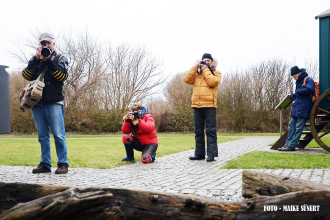 Fotoreise Helgoland - Januar 2015 / Foto: Maike Sünert