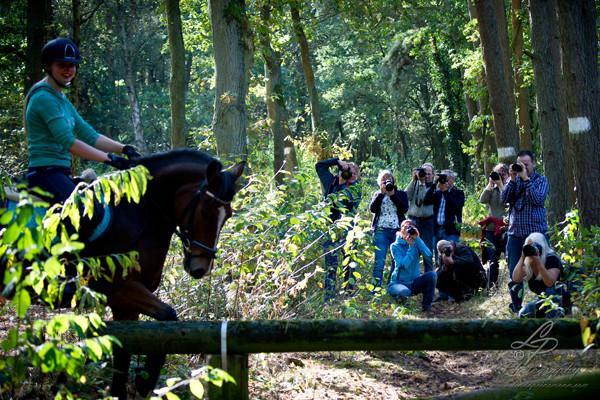 Pferdefotografie - Pferdemuseum Verden September 2014 - Leitung und Fotografie Linda Peinemann