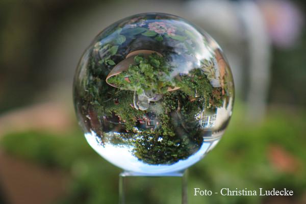 """Workshop """"Glaskugel-Fotografie"""" - 09/2014"""" Bilder von Teilnehmerin - Christina Ludecke"""