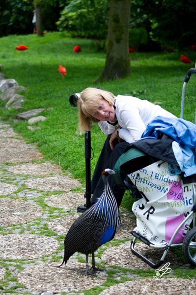 VHS Twistringen Workshop / Vogelpark Walsrode Juni 2014 - Birgit spricht mit ihrem Model