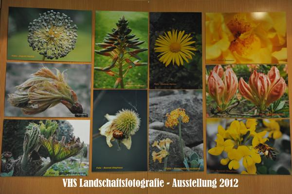 VHS Twistringen -Landschaftsfotografie 2012 - Ausstellung im Rathaus