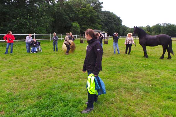 """Teil 2 - Pferde Fotografie - Workshop """"Pferde & Hundefotografie"""" Pferdemuseum Verden am 16.08.2014 - Fortsetzungsworkshop für Einsteiger"""