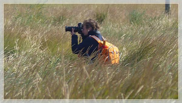 """Workshop """"Küstenfotografie - Dangast 09/2014"""" Bilder von Teilnehmerin - Karin Senger"""