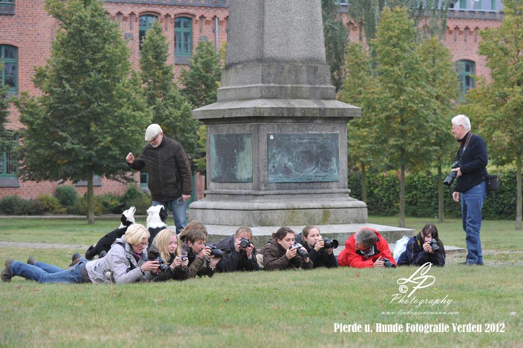 Workshop - Pferdemuseum Verden - Hundefotografie