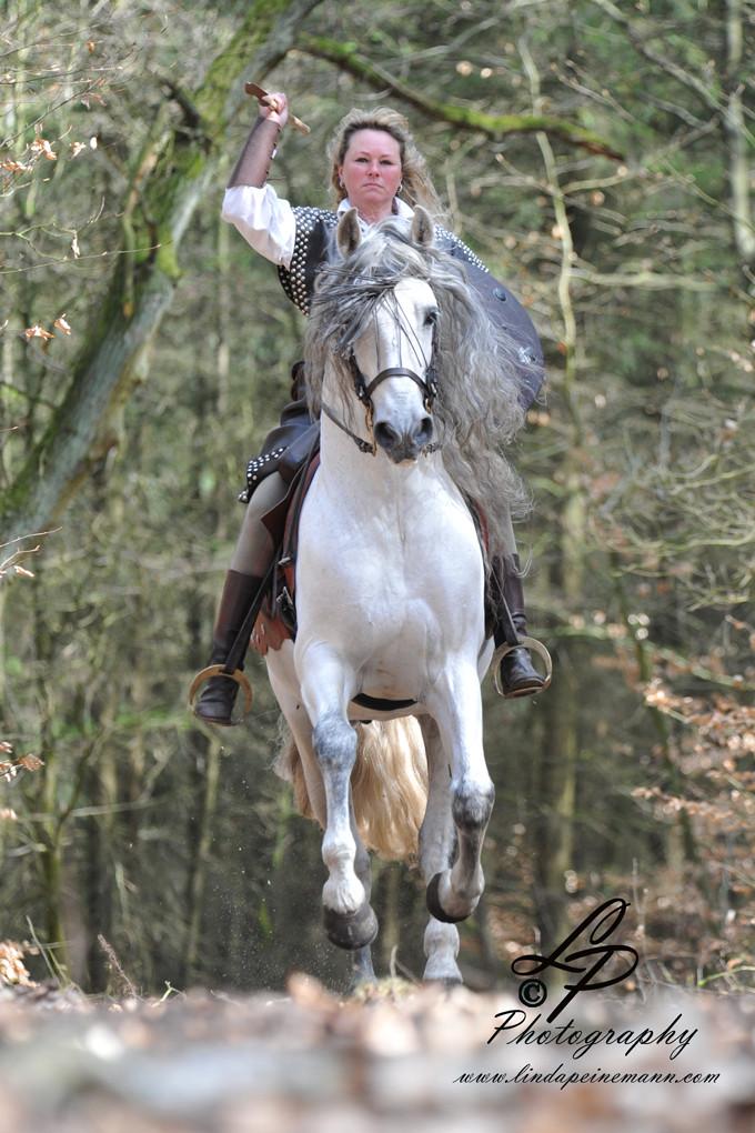 Workshop - Pferdefotografie - Frühjahr 2013 - Pferdemuseum Verden. Leitung & Fotografie Linda Peinemann