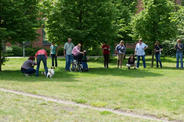 Hunde & Pferdefotografie für Anfänger/innen - Pferdemuseum Verden Mai 2014