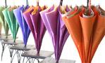 槙田商店の傘什器