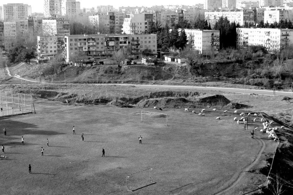 Футболисты и овцы на поле в Мухиани, пригороде Тбилиси. Фото: Хатия Басиашвили
