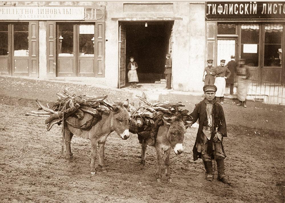 Мальчик перевозит вязанки дров на повозке, запряженной ослами.