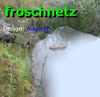 Froschnetz