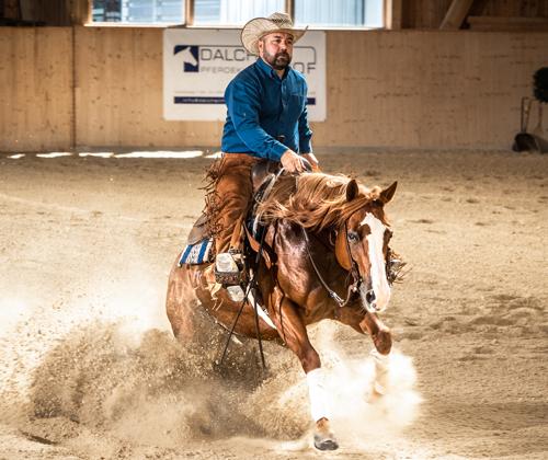 Foto: Eclectic Horseman