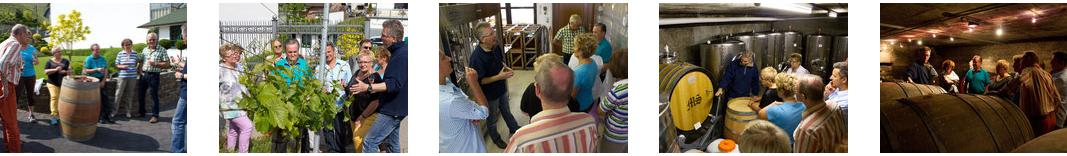 Die Weinprobe an der Ahr mit Gang an den Weinberg und Betriebsbesichtigung in einem Qualitätsweingut in Rech ist bei Einzelpersonen und kleineren Gruppen sehr beliebt und dauert ca. 2 Stunden.